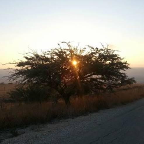 זריחה בכוכב הירדן - Sunrise at Kochav HaYarden