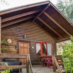 יערת הדבש - בקתת מורינגה חוץ - Yee'arat HaDvash - Moringa cabin outside