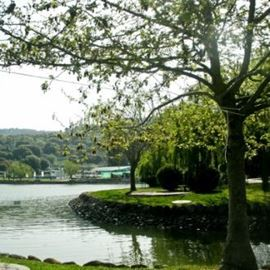 אגם מונפורט - Monfort lake