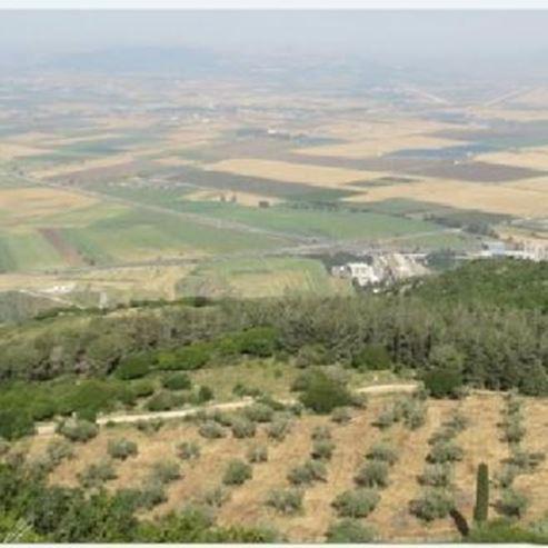 דאלית אל כרמל - Daliat El Carmel