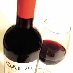 בקבוק וכוס יין - Bottle and a glass of wine