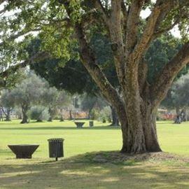 הגן הלאומי רמת גן - Ramat Gan National Park