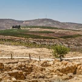 תל שילה - Tel Shilo