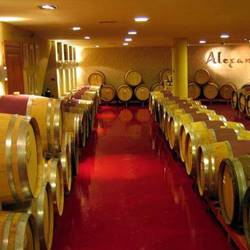 מרתף היקב - Cellar of the winery