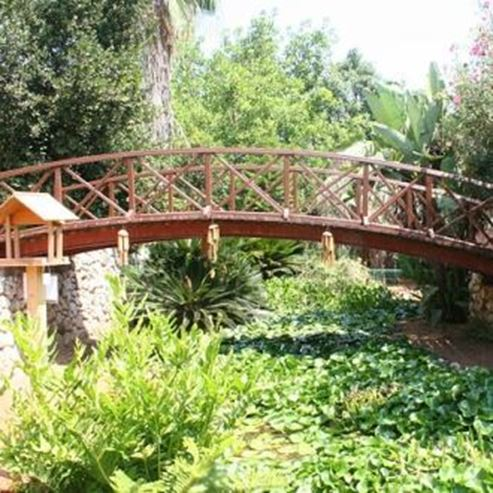 גשר בגן - Bridge in the garden