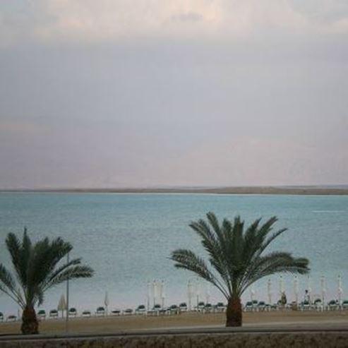 חוף דוד - David Beach