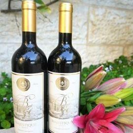 שני בקבוקי יין - Two bottles of wine