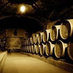 חביות ביקב המערה - Barrerls in the Cave Winery