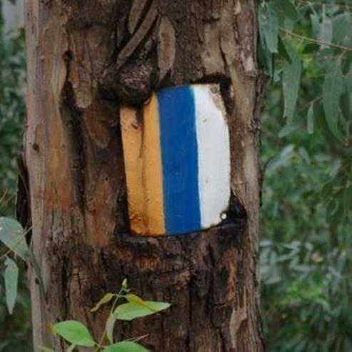 סימון השביל - Marking the trail