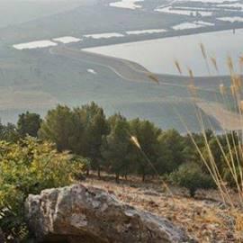 עמק החולה - Hula Valley