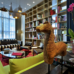 מלון אינדיגו - ספריה - Indigo Hotel - Library