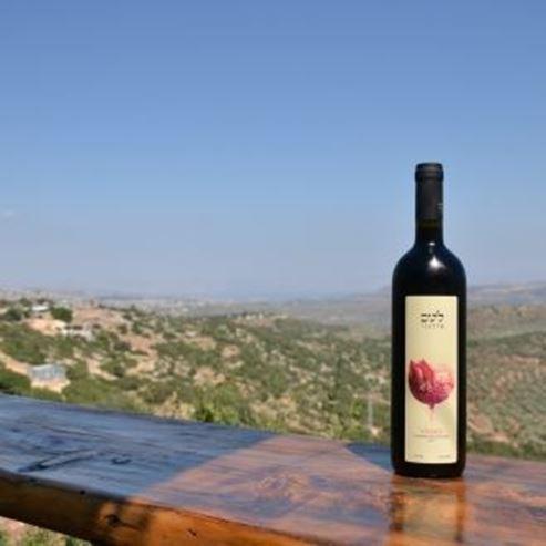 בקבוק יין ונוף