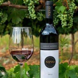 בקבוק יין וכוס- A bottle of wine and a glass