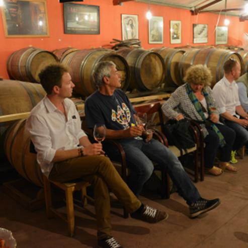 הסבר ביקב סוסון ים - Explanation in Seahorse Winery