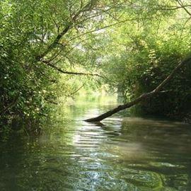 נחל - River