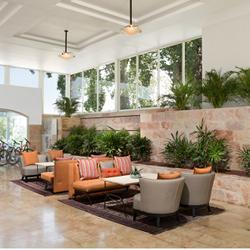 לובי מלון פונדק רמון - Lobby Ramon Inn Hotel