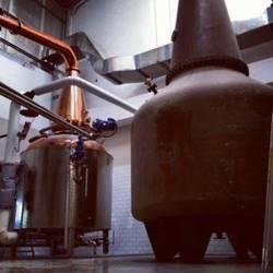 דודי הזיקוק במזקקה - Refinery's uncle in the distillery