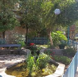 בריכת דגים -בית אורן - Fish Pond - Beit Oren