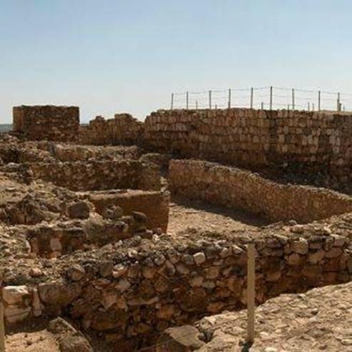 תל ערד  - Tel Arad