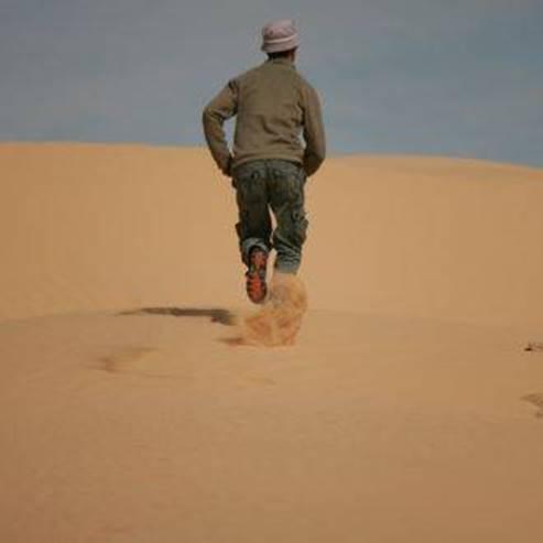 חולות כסוי - Sand dunes