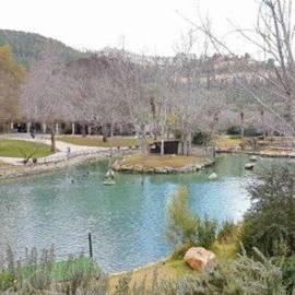 """גן החיות התנ""""כי - The Biblical Zoo"""
