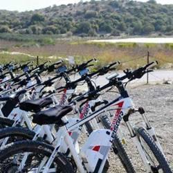 אופני לייסגר - Leisger bikes