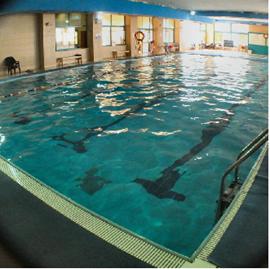 מלון פקיעין - בריכה - Pek'iin Hotel - Pool