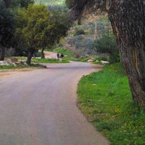שביל - Path