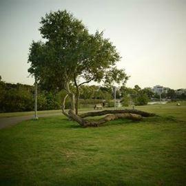 פארק הירקון, תל אביב - Yarkon Park, Tel Aviv