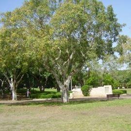 גן התקווה בשכונת התקווה - Hatikva Park in Hatikva neighborhood