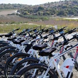 אופניים בשטח - Bicycle in a field