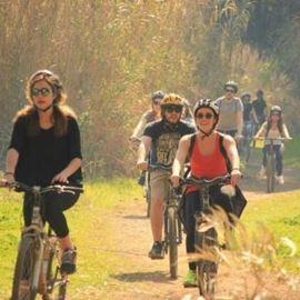 רוכבים - Riders