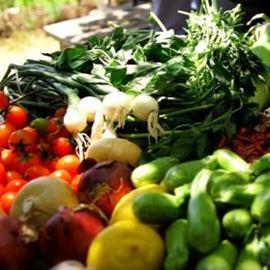 ירקות - Vegetables