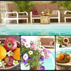 פירות ופרחים בצימר - Fruits and flowers in the Zimmer