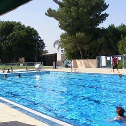 מלון שורש ירוק בהר בריכת שחייה - Shoresh Yarok BaHar Hotel swimming pool
