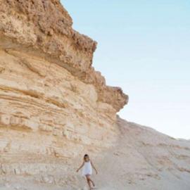 Изображение Journal - Israel: Jerusalem, Negev, Dead Sea