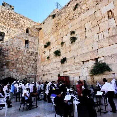 Picture of 耶路撒冷日记 叹息的墙