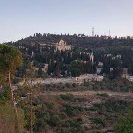 הנוף - The view