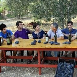 ביקור בייקב - Visit in the Winery