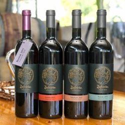 בקבוקי היין - Wine Bottles