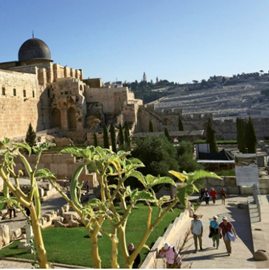 Picture of Eclectic experiences on a multicity Israel tour