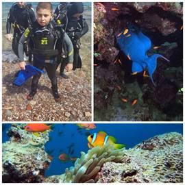 כפר הצוללים -  Diver's Village
