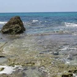 ים - Sea