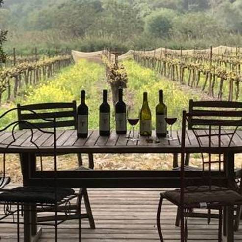 Salomon Winery - יקב סלומון