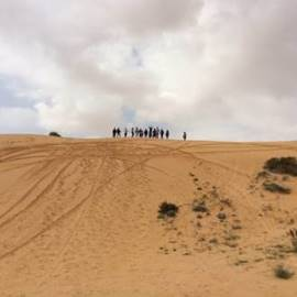 טבע וחברה במדבר - Nature and society in the desert