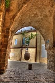 Jaffa Floating Orange Tree