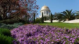 The Bahai Gardens and Temple in Haifa