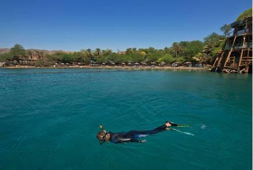 Eilat, Dolphins' Reef 2
