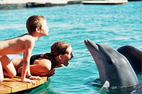 Dolphin Reef - Eilat 5