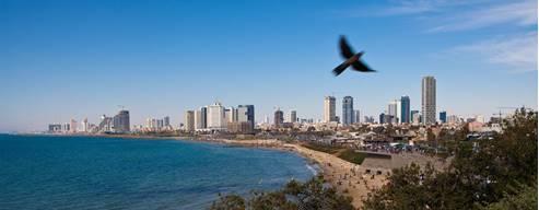 Tel Aviv Coast Panorama